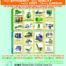 La transformation des produits de l'anacarde