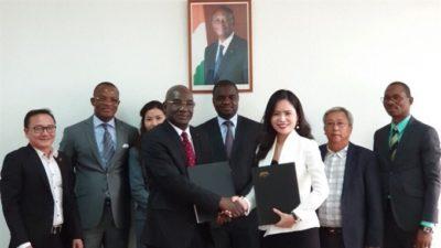 Le vietnamien T&T Group s'intéresse de près à la noix de cajou d'Afrique de l'Ouest