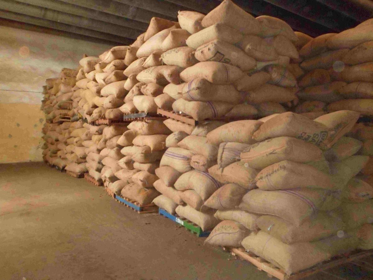 Liste des exportateurs de noix de cajou brutes agréés au titre de la campagne 2019